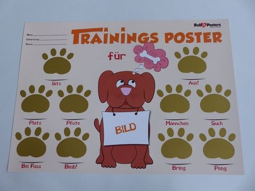Rub-it Rubbel Poster Hunde Training